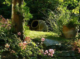 garden-274534_640